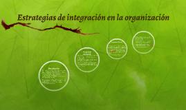 Estrategias de integración en la organización