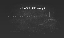 Houston's STEEPLE Analysis