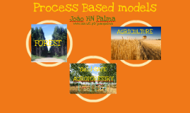 Process based models - YieldSAFE