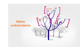 Copy of Sistema circulatorio