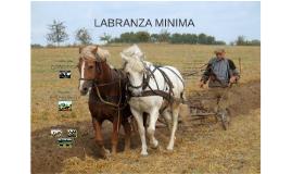 LABRANZA MINIMA