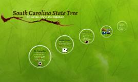 South Carolina State Tree