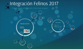 Integración Felinos 2017