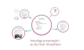 Naturfags presentasjon