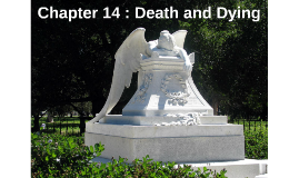 Chapter 14 : Death and Dying