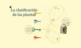La clasificacion  de las plantas