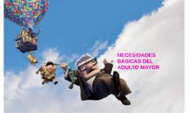 Copy of NESECIDADES DEL ADULTO MAYOR