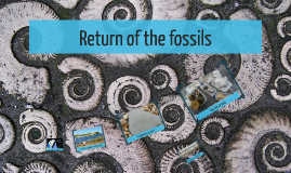Return of the fossils