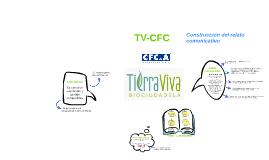 Construcción del relato comunicativo TV