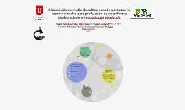 Elaboración de medio de cultivo usando sustratos no convencionales para producción de un polímero biodegradable en Azotobacter vinelandii.