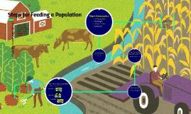Steps to Feeding a Population