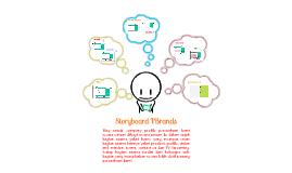 Storyboard IBrands (Multimedia System)