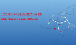 LOS MICROORGANISMOS EN SUS HABITAT NATURALES