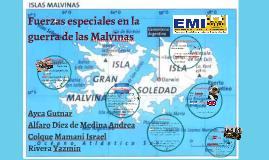 Fuerzas especiales en la guerra de las Malvinas