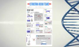 Estructura Recibo TELMEX