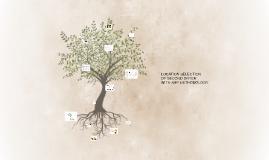 Copy of Copy of Rhea Olive Oil