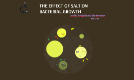 BACKUP: THE EFFECT OF SALT ON BACTERIAL GROWTH