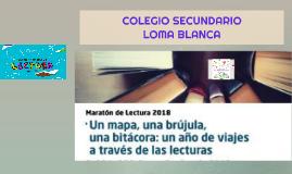 COLEGIO SECUNDARIO LOMA BLANCA