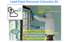Lead Paint Removal Columbia SC