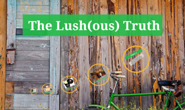 The Lush(ous) Truth