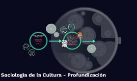 Sociología de la Cultura - Profundización