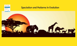 Speciation and Patterns in Evolution