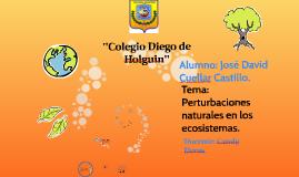 Copy of ''Colegio Diego de Holguin''