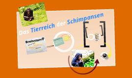Copy of Copy of Schimpansen