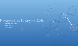 Prokaryotic vs E