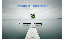 Proyector de microorganismos