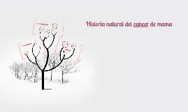 Copy of Historia natural del cancer de mama