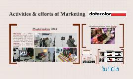 Activities & efforts of Marketing