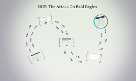 DDT: The Attack On Bald Eagles