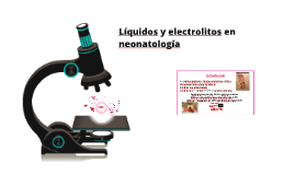 Liquidos y electrolitos en el neonato taller original