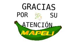 """Copy of Copy of """"Patacones pre cocidos con aderezos"""""""