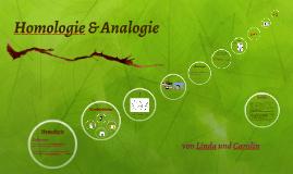 Homologie - Analogie