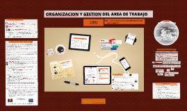 ORGANIZACION Y GESTION DEL AREA DE TRABAJO