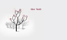 Silver | Revlis