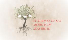 FUNCIONES DE LAS MEDIDAS DE SEGURIDAD