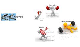 S.W.A.T. Analysis