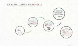 AGRICULTURA  EN ALMERIA