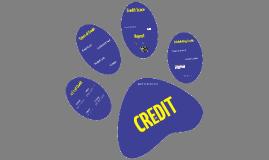LLS Credit