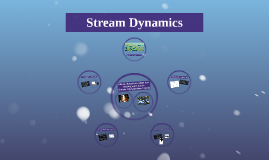 Stream Dynamics