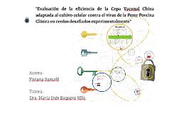 Evaluación de Cepavacunal China adaptada al cultivo celular