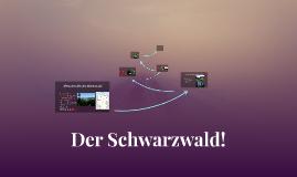Der Schwarzwald!