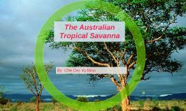 The Australian tropical savanna