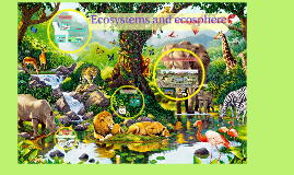 Unit 11: Ecosystems