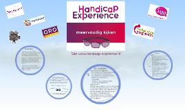 Handicap Experience vakgroepdag gedragskundigen DTZC