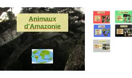 Animaux d'Amazonie