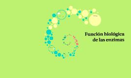 Copy of Función biológica de las enzimas